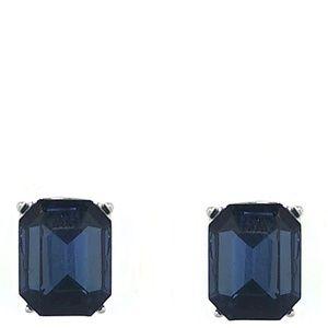 Monet Silver Tone & Blue Crystal Earrings | 332